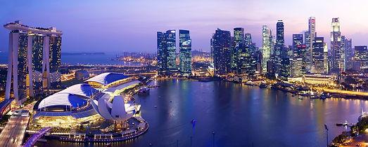 singapore_tour.jpg