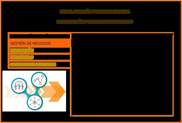 Gestión_de_negocios.png