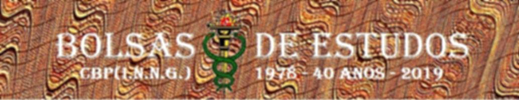 Banner bolsas de estudo 8.jpg