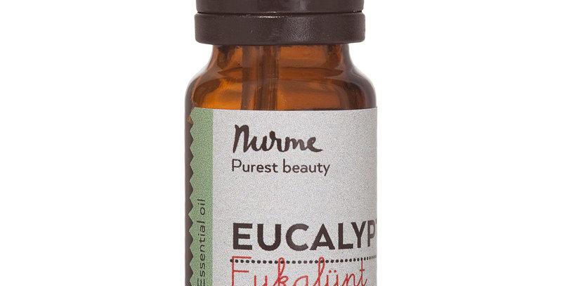 Nurme Eucalyptus eucalyptuksen eteerinen öljy