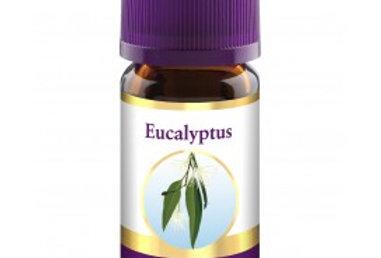 Taoasis Eukalyptus eteerinen öljy 10ml