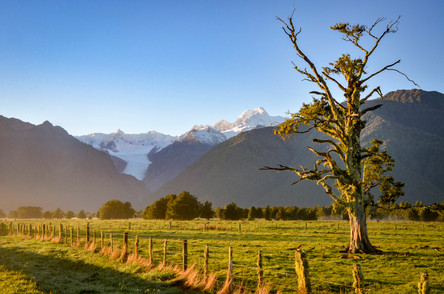New Zealand Morning