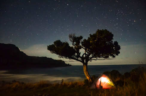 Coastal Camping in New Zealand