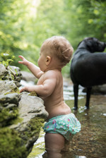 Discovering the River