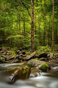 Flowing Shenandoah