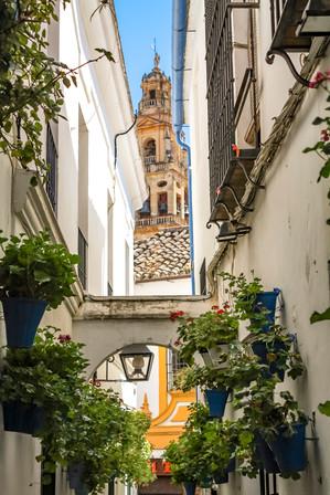 Flowery Spanish Street