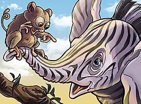 Zebra Tarsier Talking Africa Cartoon Storyboard Illustration