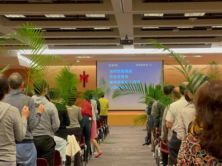 【東福藝文】聖經中的棕樹枝