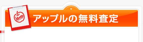form_title.jpg