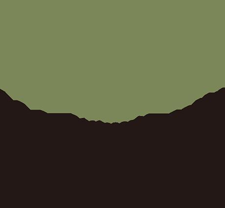 ル ソレイユ ドゥ マタン
