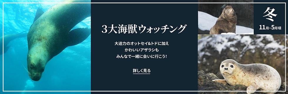 ゼムハウス素材22.png