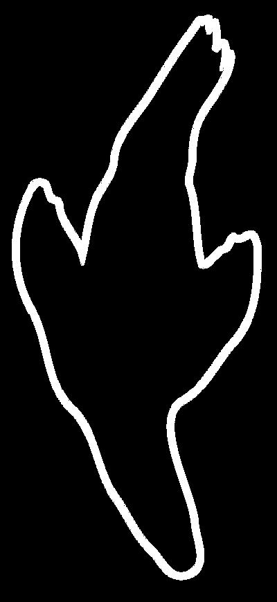 ゼムハウス素材7.png