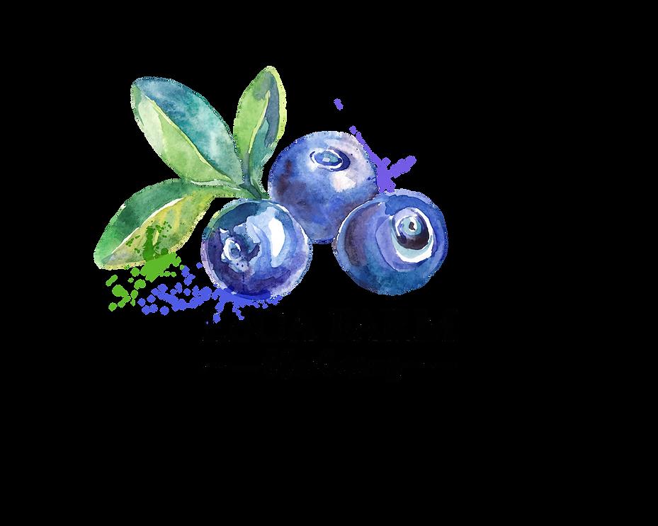 LoCA Logo4 copy.png