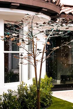 8ft Raining Maple