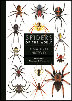 Spiders of the world cover 2a