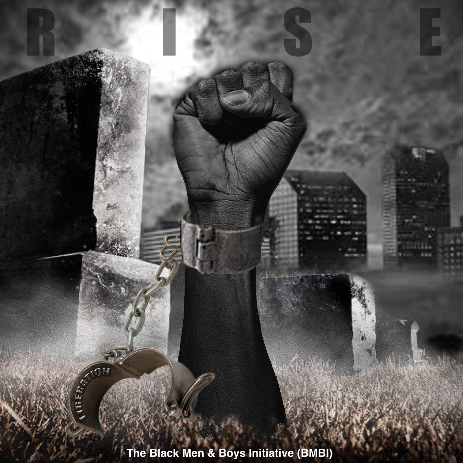 The RISE Project