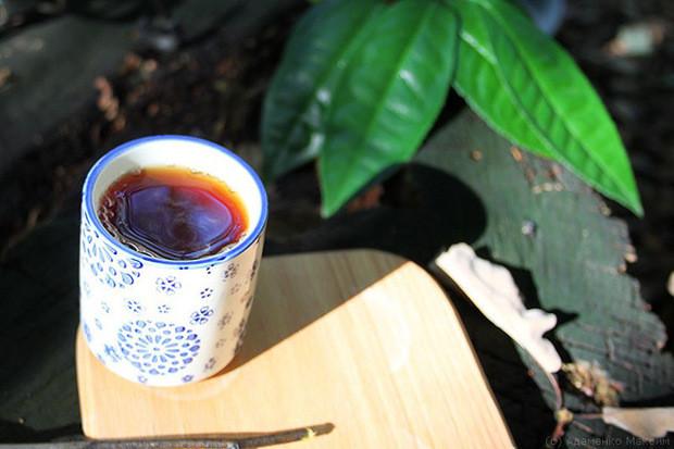 Чай Закарпаття