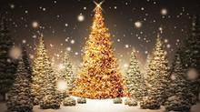 Колорит зимних украинских праздников на Закарпатье