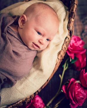 Matilda 🌷💕#newbornphotography #newborn