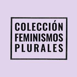 Feminismos Plurales