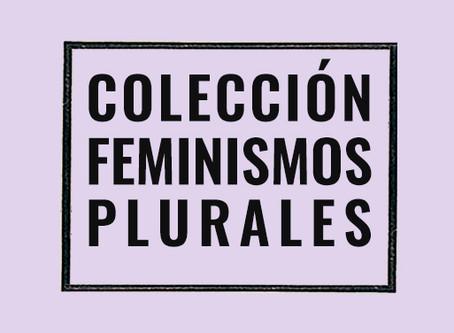 Lugar de enunciación y los Feminismos Plurales de Djamila Ribeiro