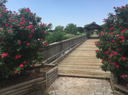 bridge with flowers