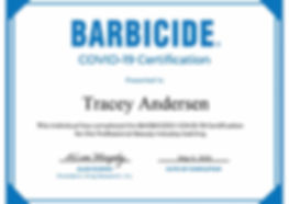 Certificate-Tracey1024_1.jpg