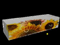 Daisybox Sunflowers
