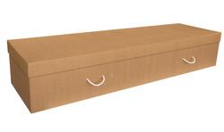 Daisybox Cardboard Coffin