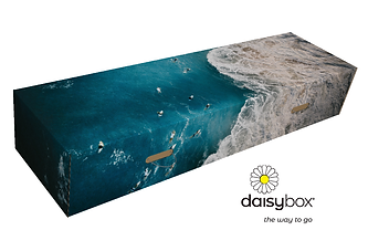 Daisybox-Signature-Series-Noosa-surf.png