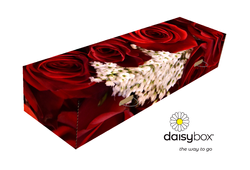 Daisybox Red Roses