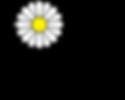 daisybox-logo-web.png