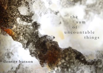 the sum of uncountable things (Deadly Chaps Press, 2015)