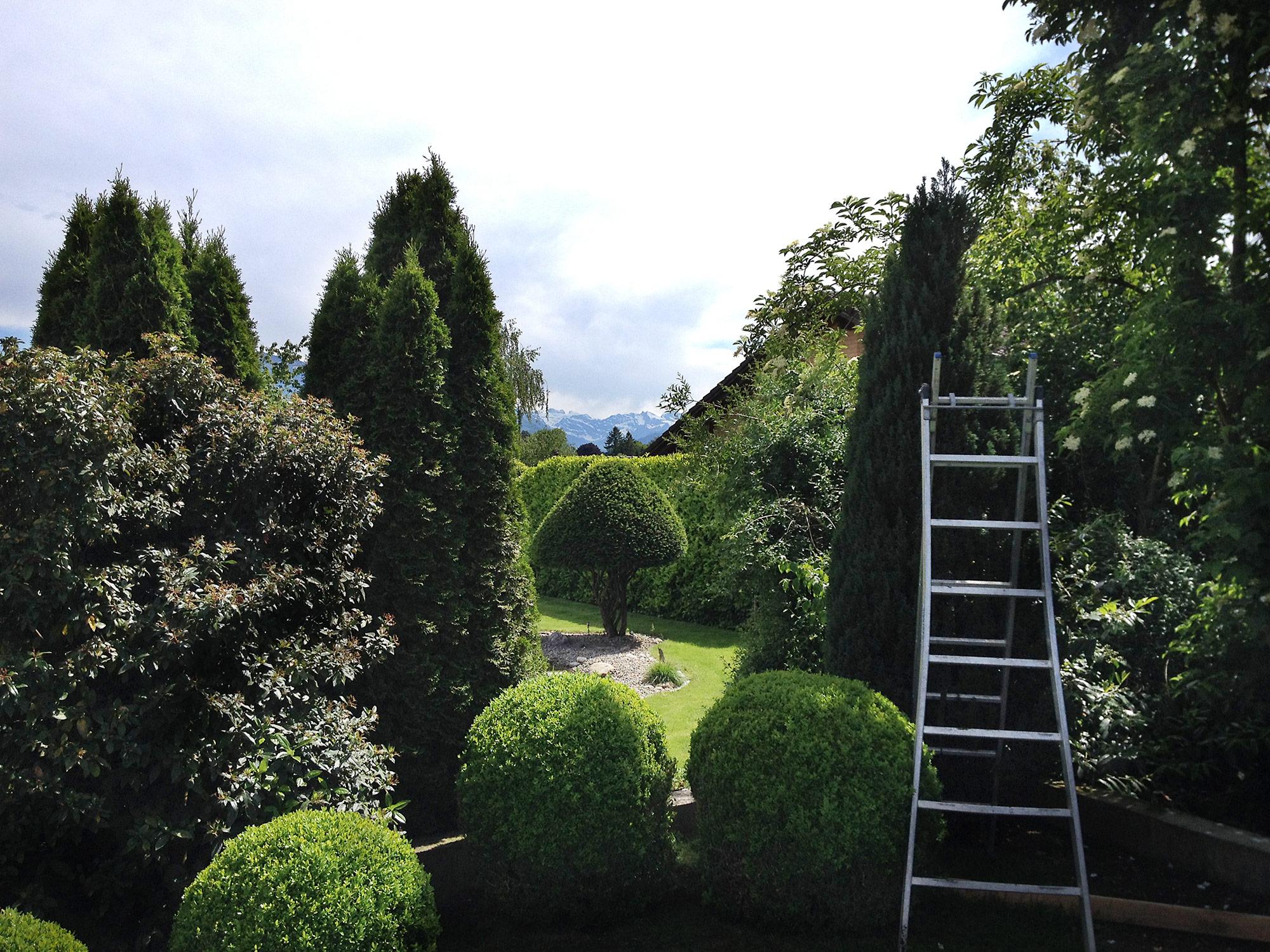 Gartenpflege und Unterhalt