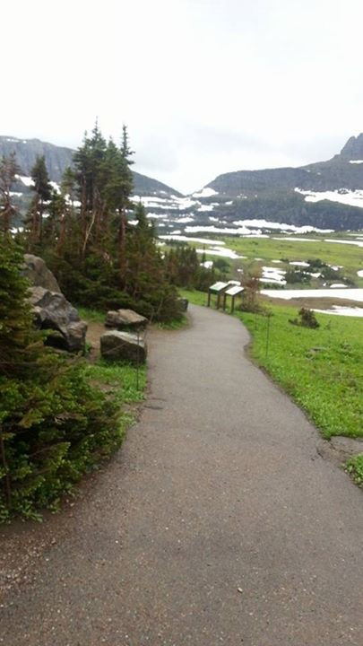 Trail at Logan's Pass in Montana