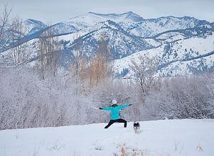 Snowga-horizontal.JPG