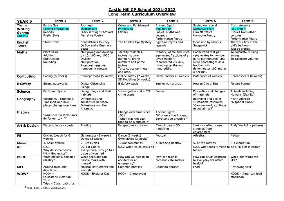 Year 5 Long Term Curriculum Overview 2020-2021.jpg