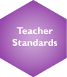 Teacher Standards Selected