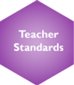 Teacher Standards Selected
