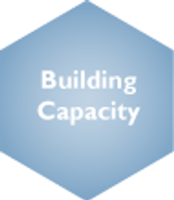 Building Capacity Deselected