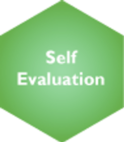 Self Evaluation Selected