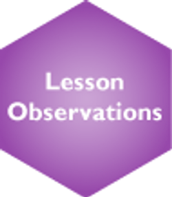Lesson Observations Selected