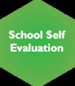 School Self Evaluation Deselected