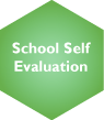 School Self Evaluation Selected