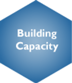 Building Capacity Selected