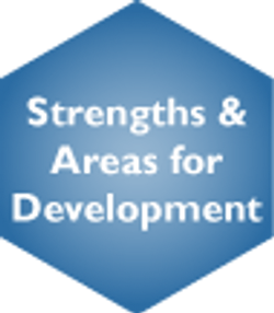 Strengths & Areas for Development Selected