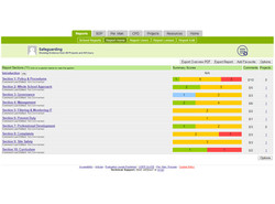 Safeguarding report overview