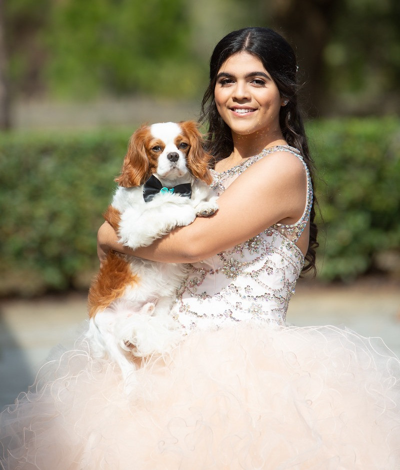 Quinceanera blush dress with fur baby
