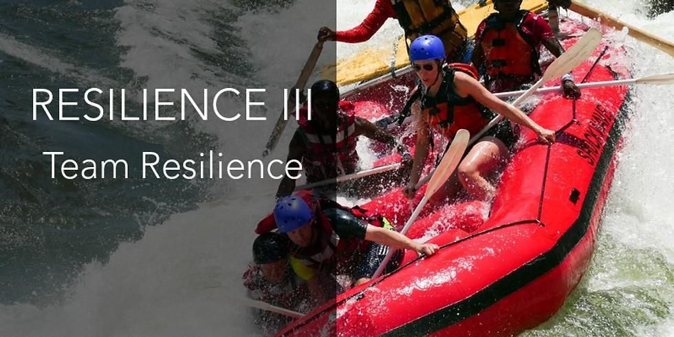 Resilience III - Team Resilience