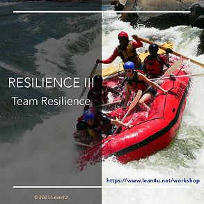 Team resilience